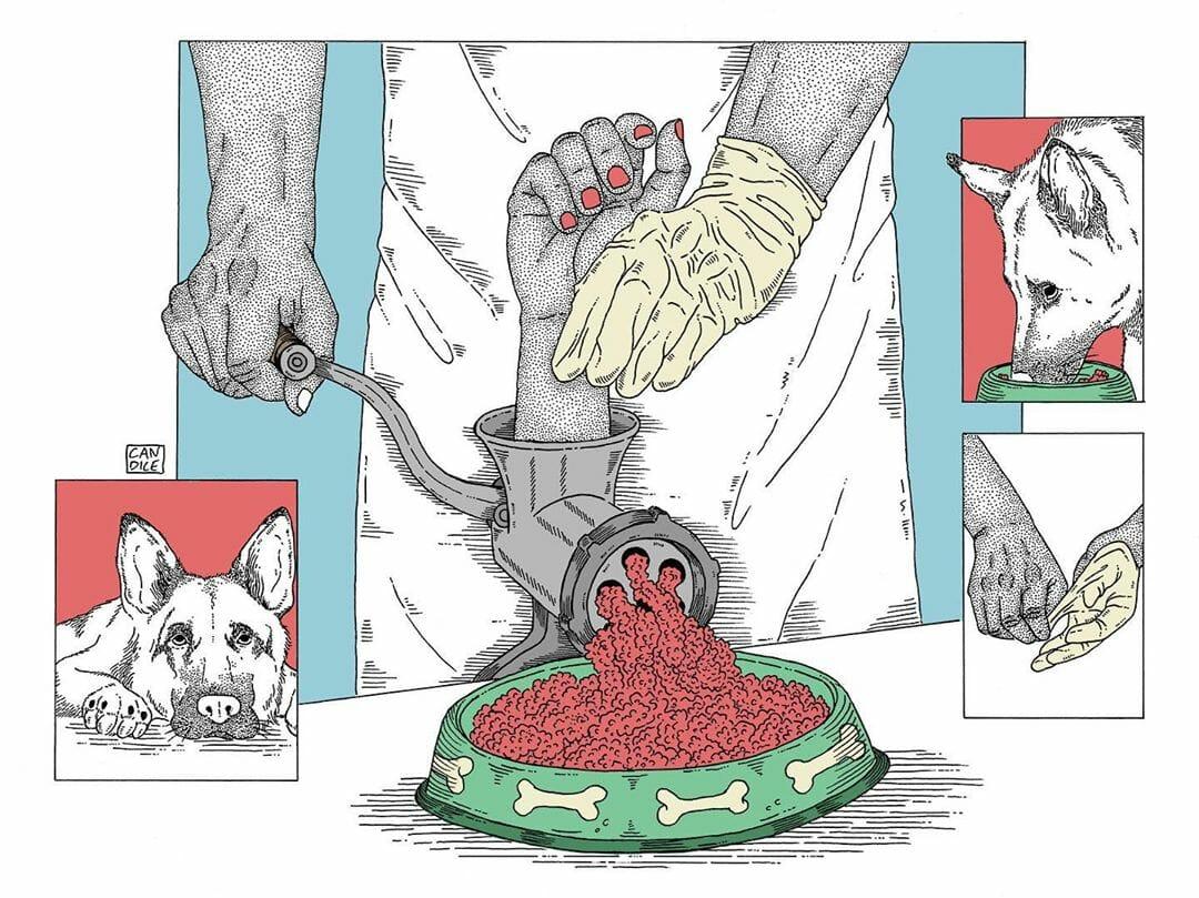 Candice Roger, chien et chair à pâtée