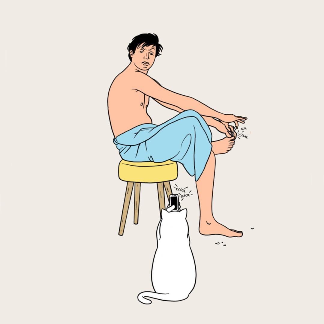 Et si les chats nous prenaient eux aussi constamment en photo, un concept illustré par Jean-Michel Tixier