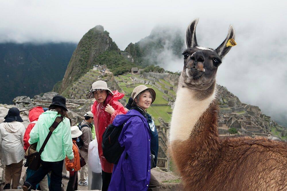 Martin Parr Machu Pichu
