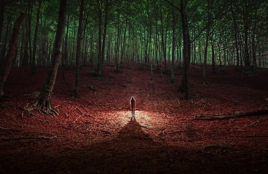 On voit nune femme se tenir debout au milieu d'une forêt dense