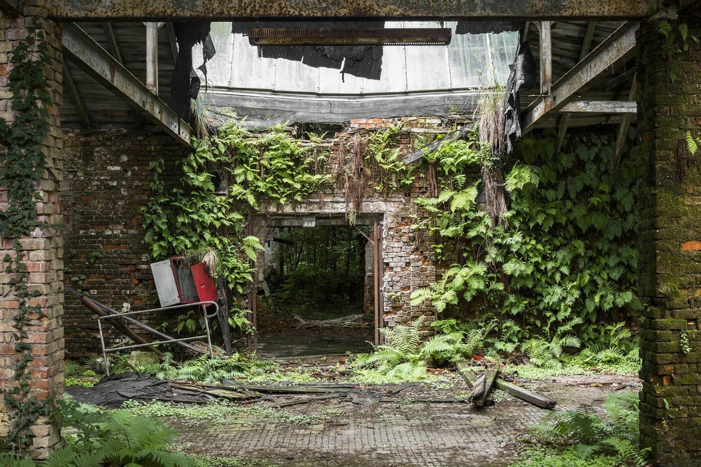 Porte d'une usine, les murs en brique sont recouverts de plantes