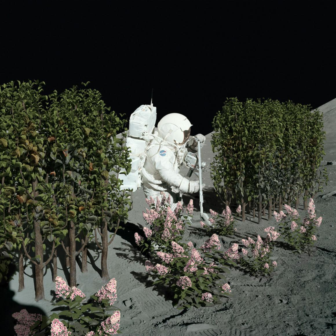Astronaute qui fait du jardinage sur la lune