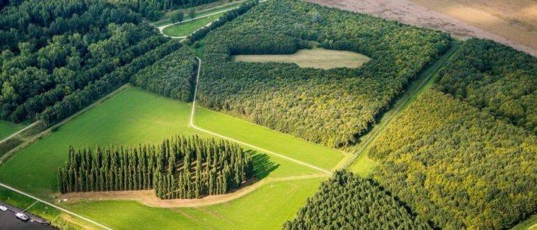 Vue de haut de la Cathédrale Verte faite avec des arbres