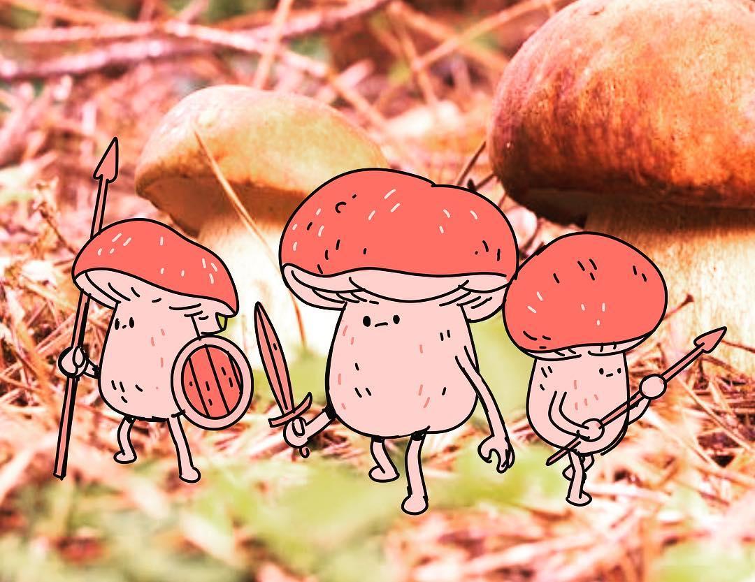 Petits champignons roses dessinés qui sont au milieu d'une vraie photo de champignons