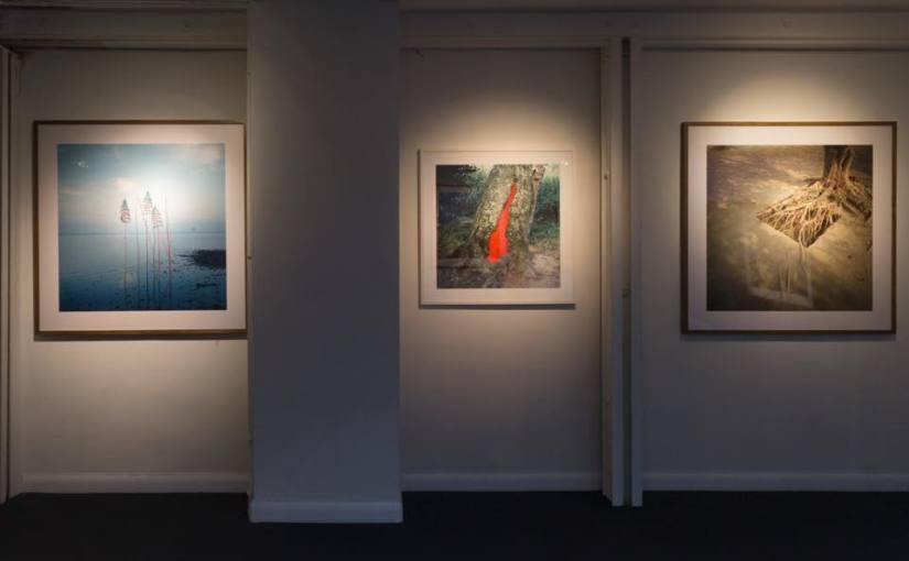 Images de land art lors d'une exposition