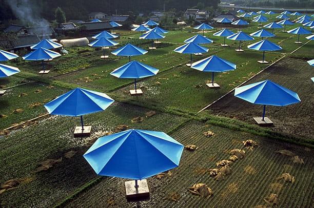 Parasols bleus plantés dans des rizières