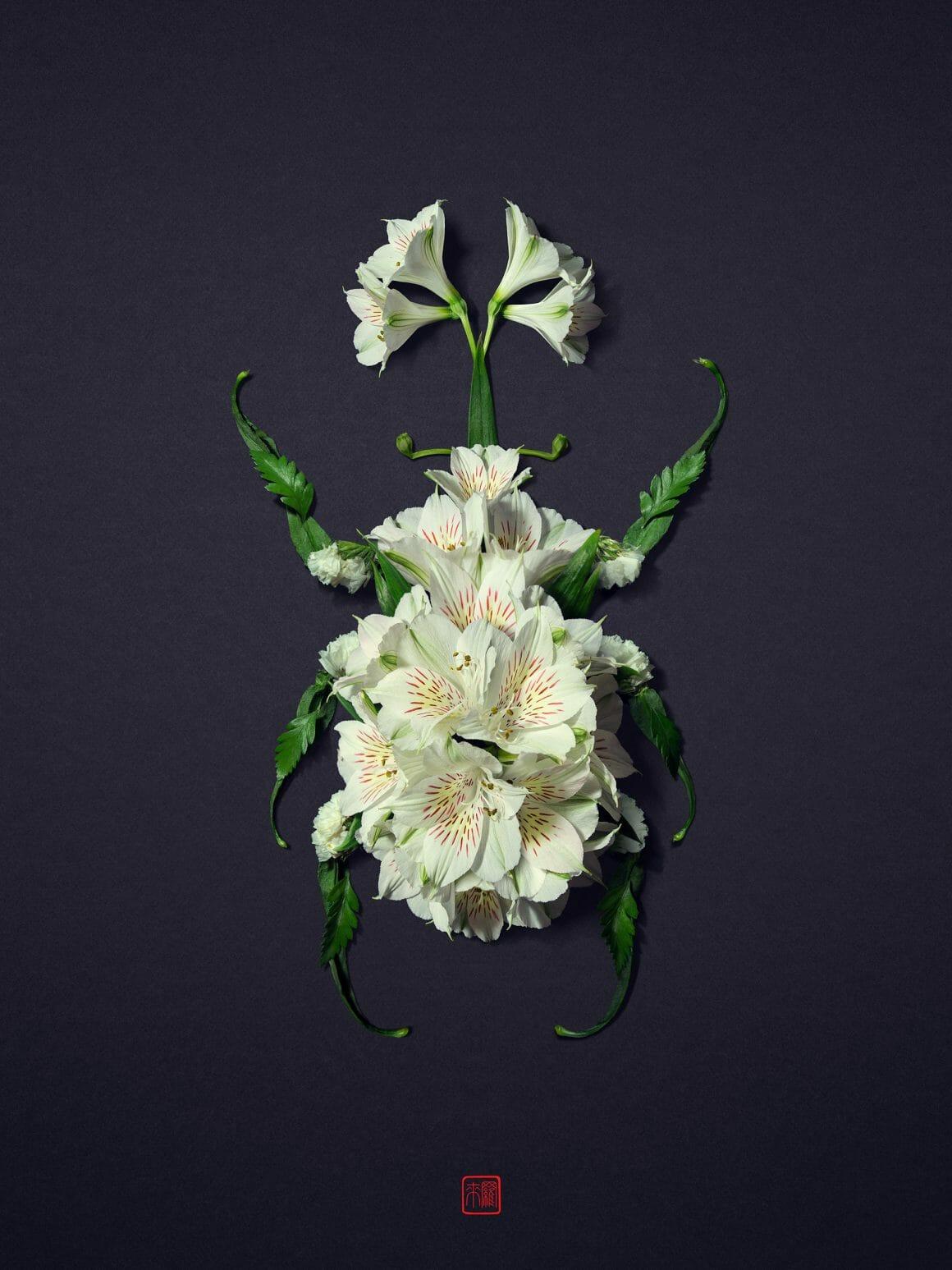 Scarabée fait de fleurs blanches