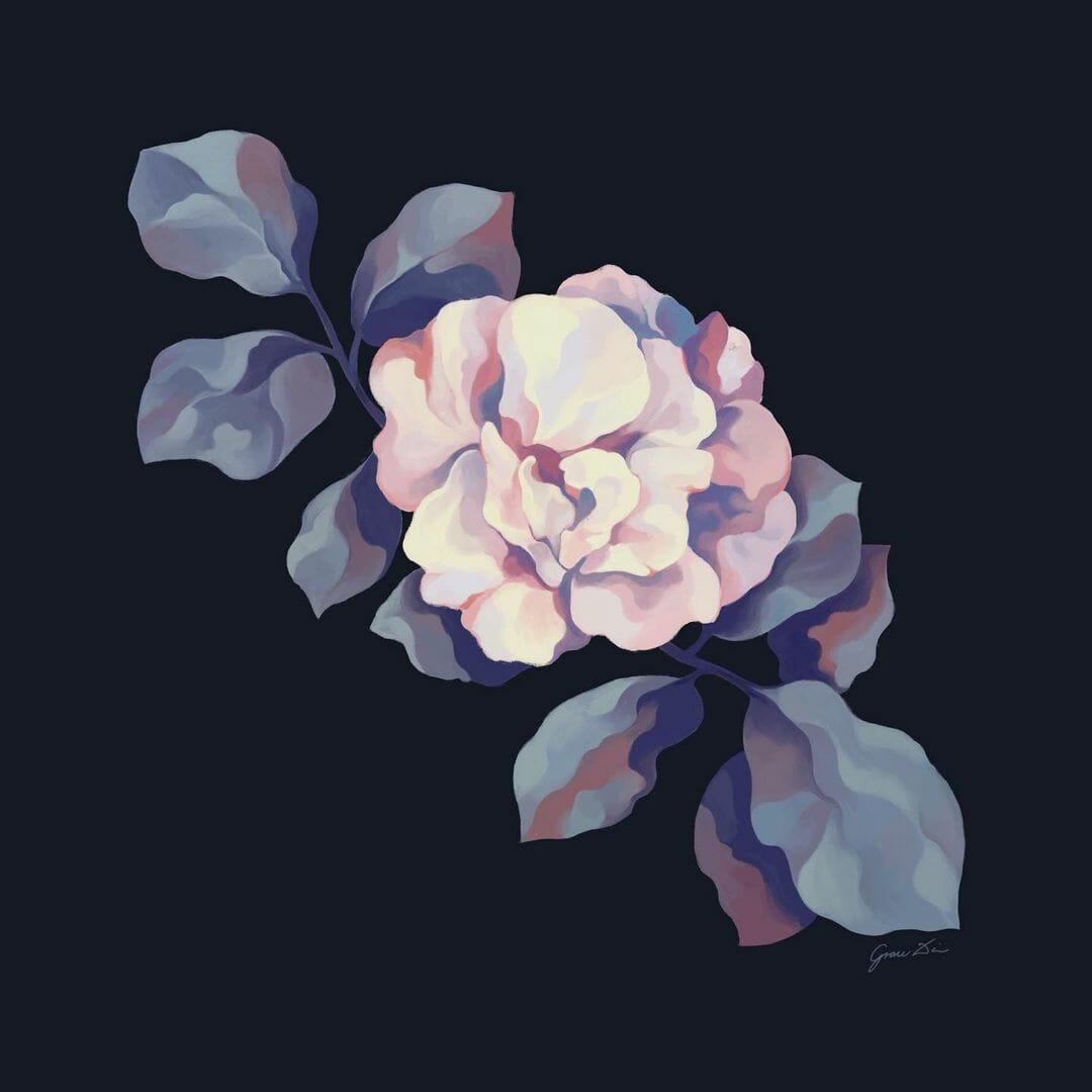 Sur fond noir une fleur de magnolia