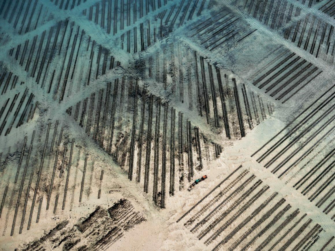 Bancs plus découverts, presque terreux, passage de tracteurs. En haut à gauche la mer se fait encore percevoir et crée un contraste.