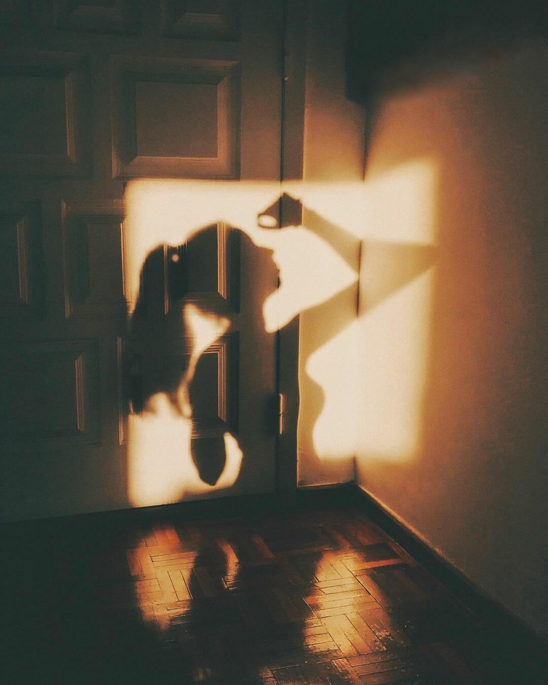 Sara Latif photographie