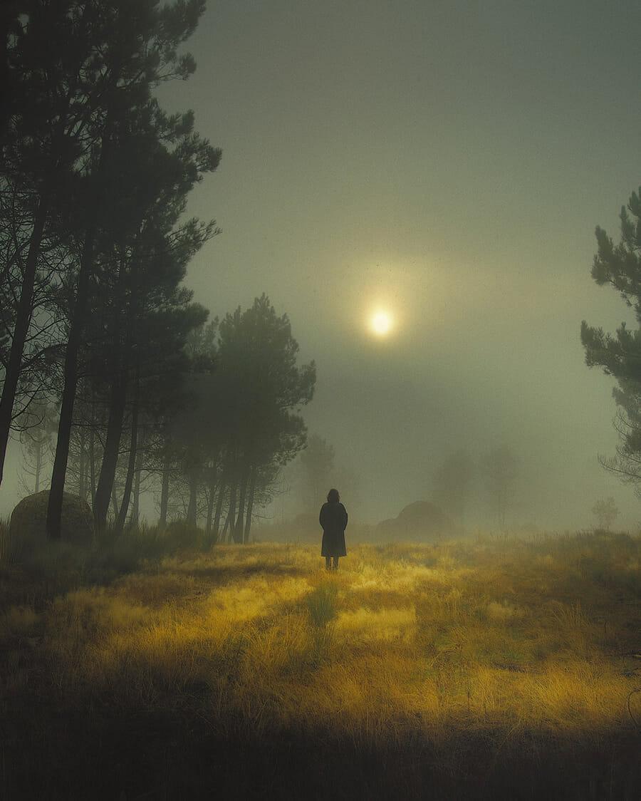 Une personne est de dos de loin dans un champ avec des arbres autours dans une atmosphère très sombre
