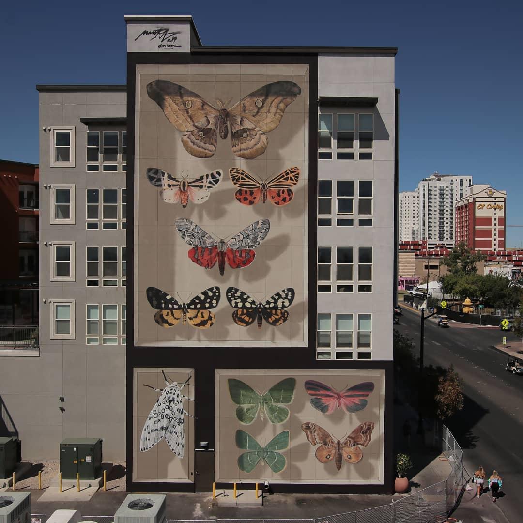Photographie d'une fresque avec des papillons.