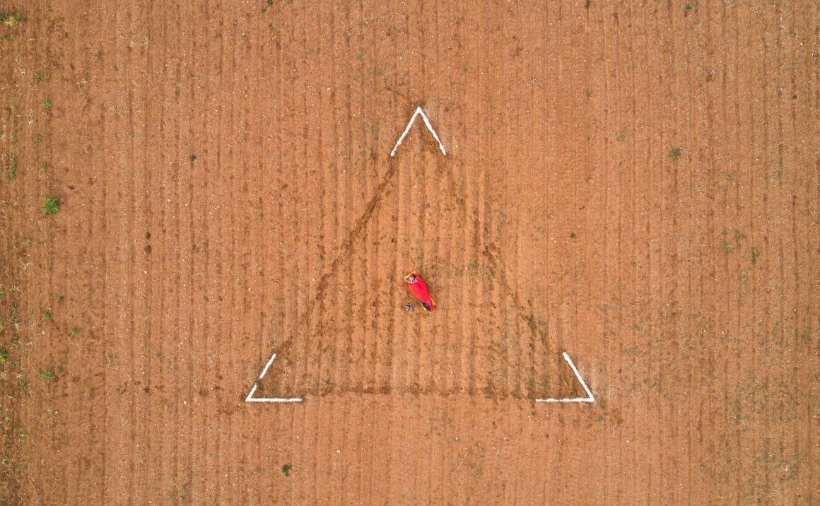 Photographie du dessus de Ruben Martin De Luca dans un champs