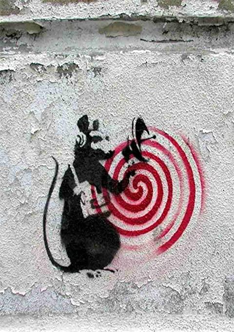 Tag d'un rat avec un radar.