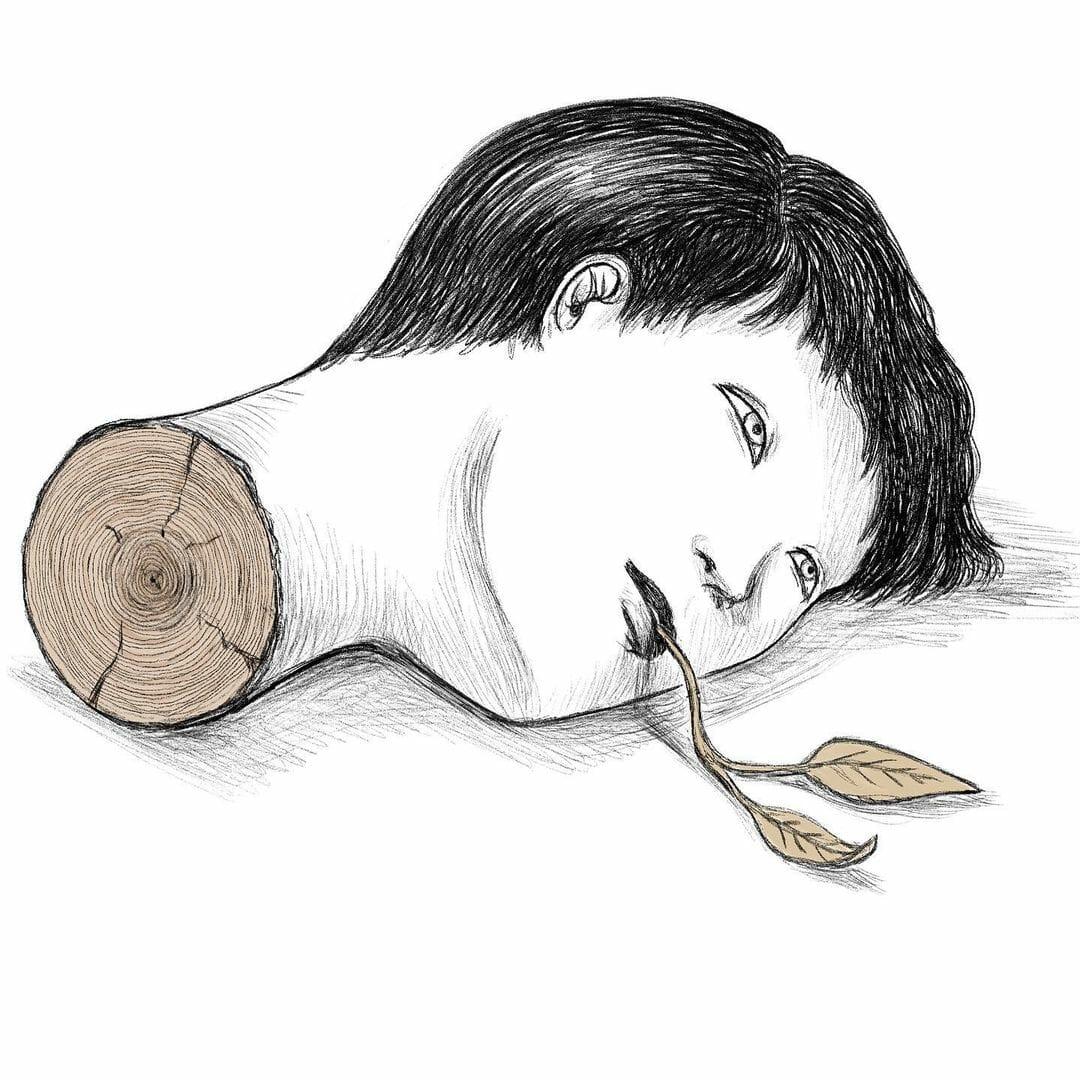 Illustration d'une tête coupé comme un tronc d'arbre.