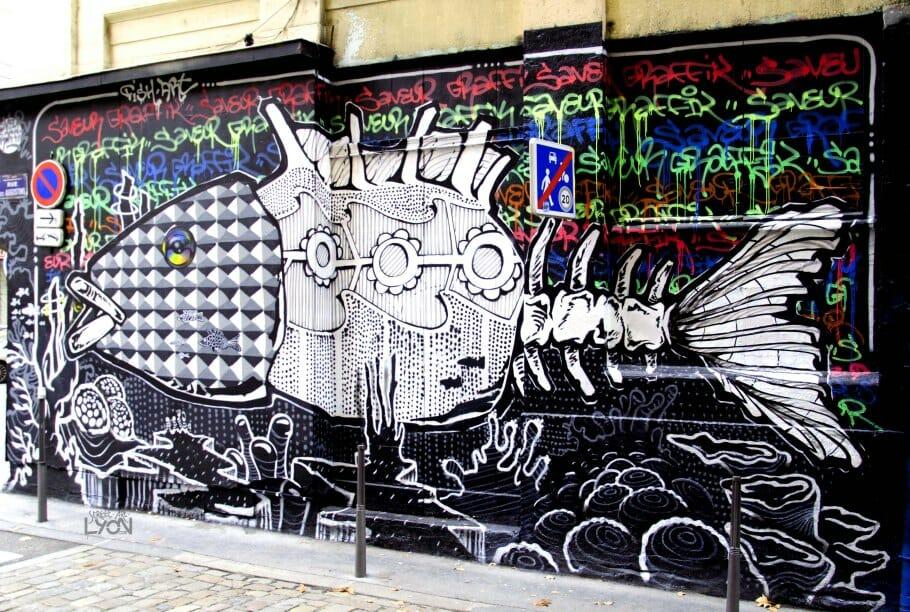Itinéraire au cœur du Street-art lyonnais : 3 quartiers à découvrir 7
