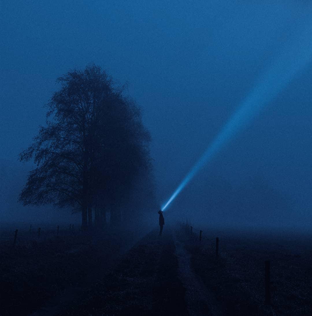 arbre et faisceau de lumière