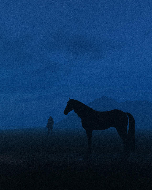 cheval devant montagne