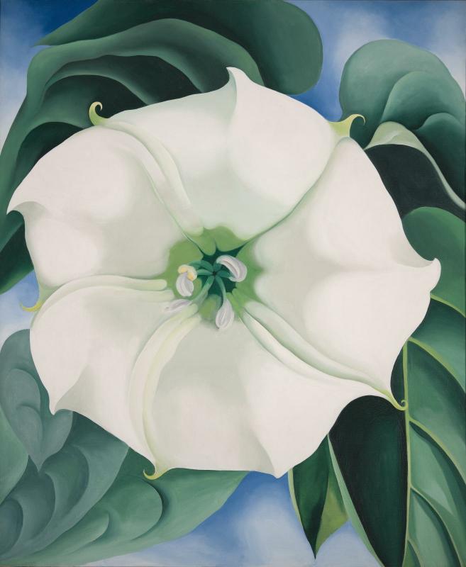 imson Weed / White Flower No.1, Georgia O'Keeffe, 1932