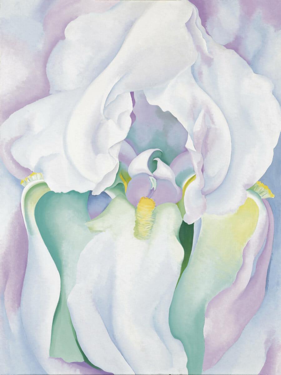 White Iris No.7, Georgia O'Keeffe, 1957